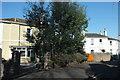 SX9064 : Villas, Cleveland Road, Torquay by Derek Harper