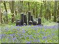 SW4932 : 'Bluebells & 'Black Mound' at Tremenheere Sculpture Gardens by Rod Allday
