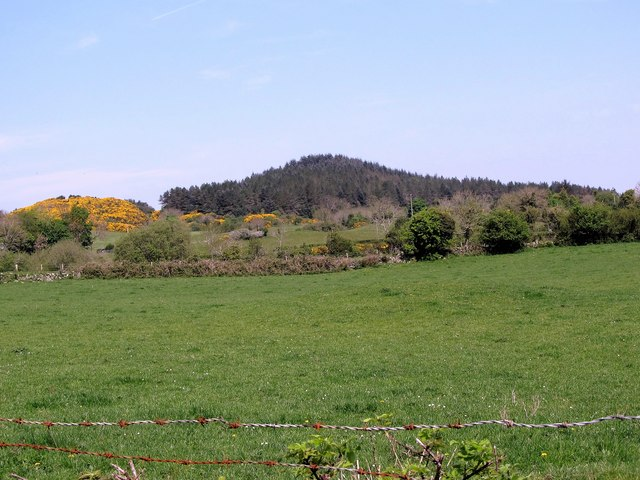 View across grassland towards Bohill