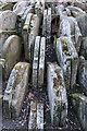 TQ2983 : Gravestones by the Hardy Tree, St Pancras Old Church, St Pancras Way, London N1 by Christine Matthews