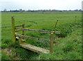 SJ4670 : Footbridge off Wildmoor Lane by Dave Dunford