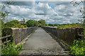 SS3303 : Derriton Viaduct : Week 21