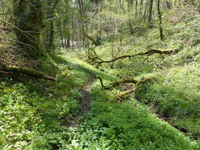 Path to Via Gellia