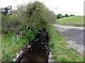 H5259 : Stream, Cormore / Dunbiggan by Kenneth  Allen