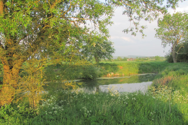 A Field Pond on Alnwick Farm
