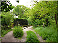 SU9863 : Path towards Gracious Pond Road by Robin Webster