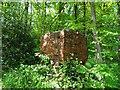 SJ9847 : Old workings in Consall Wood by Ian Calderwood