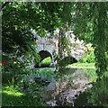 TQ5447 : Bridge at Hall Place lake : Week 22