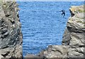 SX0081 : Tombstoning at Port Gaverne 2 by Derek Voller
