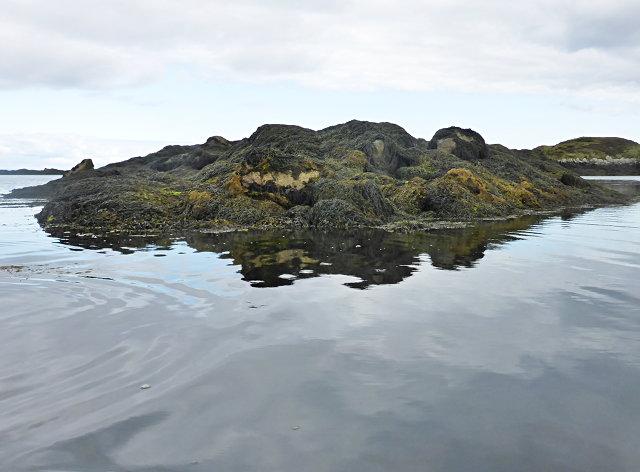 Tidal rock near Cleit Steiseigh