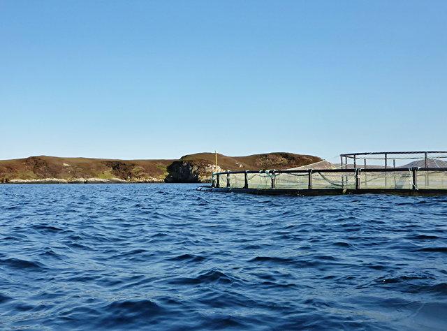 Fish farming near Eilean Ornais