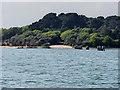 SZ0186 : Furzey Island Landing Stage by David Dixon
