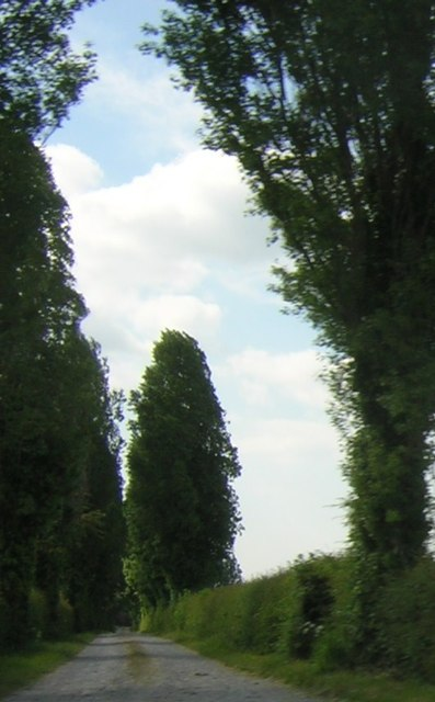 Driveway to Wybunbury Grange