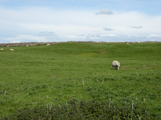 Site of the Roman fort at Maryport