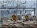 NT2373 : Trains through a heat haze by Thomas Nugent