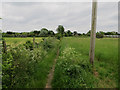 TL3368 : Footpath near Fen Drayton by Hugh Venables