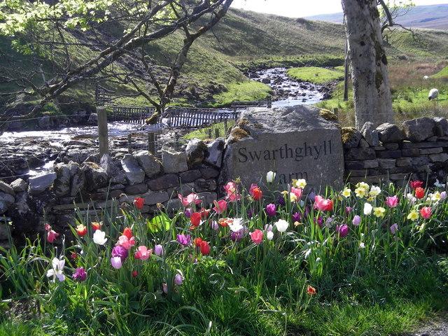 Swarthghyll Farm driveway