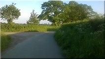 SJ6744 : Junction on Monk's Lane, Hankelow by Christopher Hilton