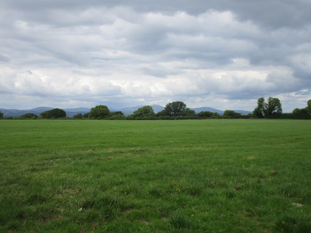 Grassland near Aghern