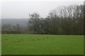 """SO4952 : """"View"""" over Dinmore by Richard Webb"""