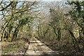 SX1463 : Lane near Penadlake by Derek Harper