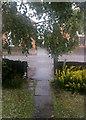 TL4656 : Lichfield Road: cloudburst with hailstones by John Sutton
