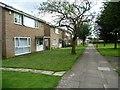 TL1699 : Housing in Lindridge Walk, Peterborough by Christine Johnstone