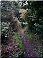 SZ0696 : Kinson: footpath E28 heads down to Millhams Road by Chris Downer