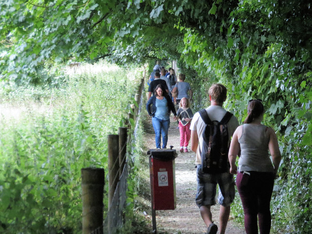 A Busy Day on the Footpath to Tring Park