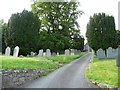 SO0288 : Yew trees in the churchyard, Llandinam by Christine Johnstone