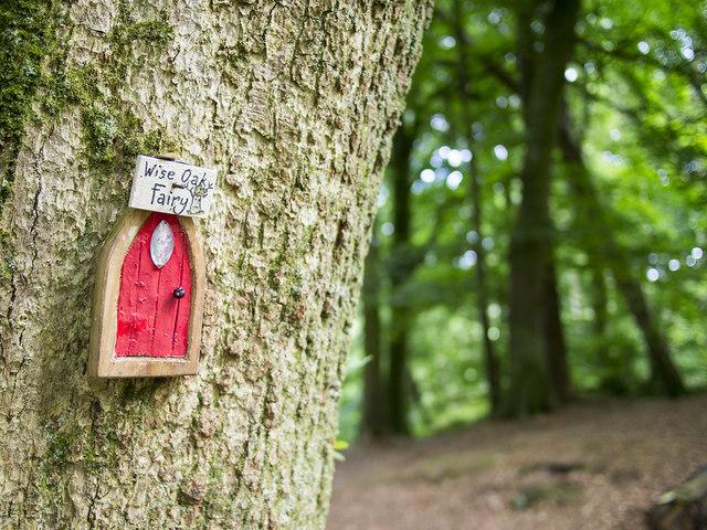 Fairy door slieve gullion rossographer cc by sa 2 0 for Irish fairy door uk