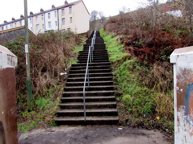 Steps up to milton terrace brithdir jaggery geograph for Terrace steps
