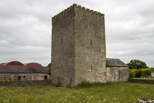 Castles Of Leinster Ballyteige Co Mike Searle