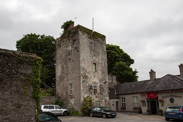 Castles of leinster kildare co mike searle cc by for Kildare castle