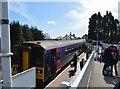SX4270 : Gunnislake Station by N Chadwick