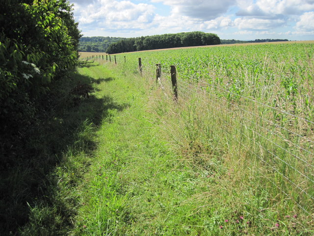 King's Way footpath towards Oakhouse Plantation
