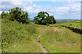 SE0635 : Bridleway between Manywells Height and Cullingworth (1) by Chris Heaton