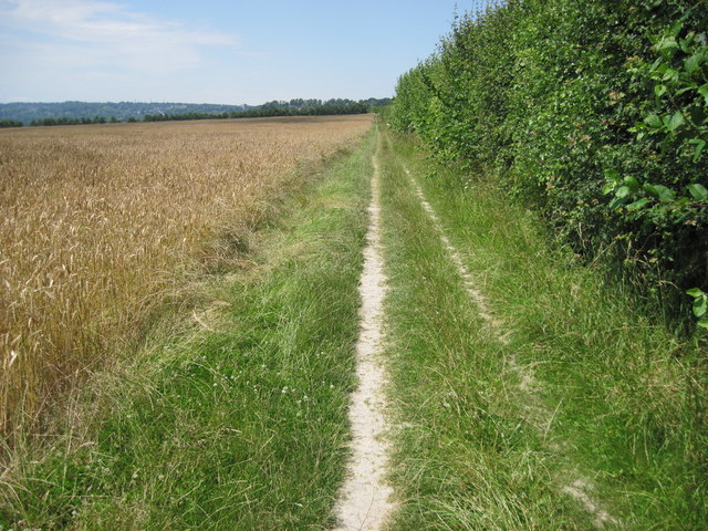 South Downs Way from Chilcomb towards Winchester
