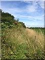 TL0653 : Towards Cleat Hill by Dave Thompson