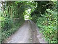 SU5586 : Track to the Downs by Bill Nicholls