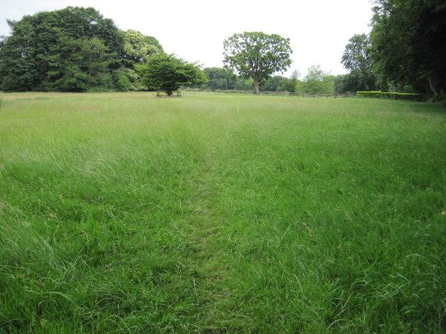 Footpath towards Selborne Common