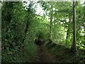 TL0118 : Towards Whipsnade Heath by Dave Thompson