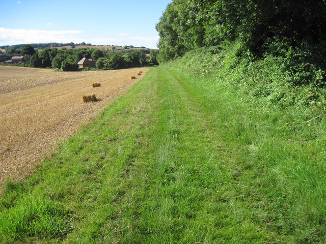 Footpath towards West Meon