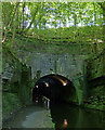 NS8878 : North portal of the Falkirk Tunnel by Mat Fascione