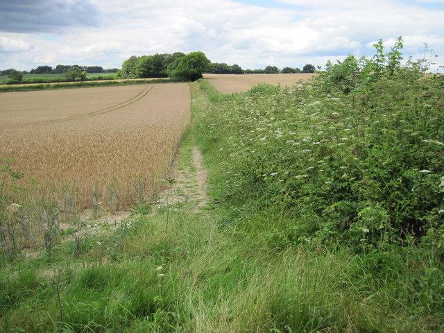 Path towards Hinton Ampner
