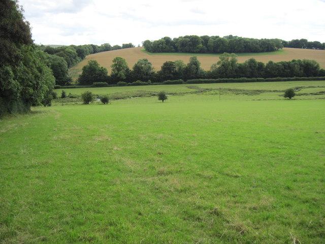 Across the Meon Valley towards Sheepbridge Copse