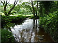 SJ9767 : Ford through the Clough Brook by Richard Law