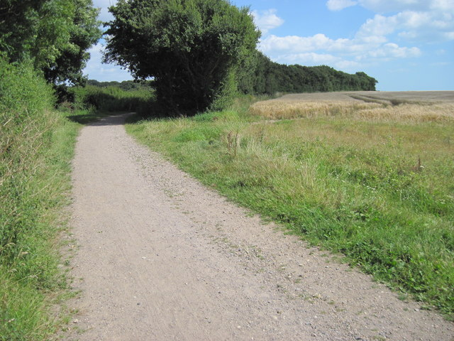 Track towards Chilling Copse