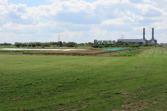 Fenland south of Pinchbeck pumping station