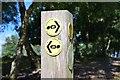 SJ5053 : Waymarks on the Sandstone Trail, Bickerton Hill by Jim Barton